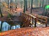 die legendäre Liebesbrücke über die Schaale (Sophia-Fatima) Tags: kogel mecklenburgvorpommern deutschland schaale brücke bridge liebesbrücke schaalebrücke naturschutzgebietschaalelauf