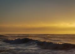 2M9A6635 - Berrara Beach Sunrise (Gil Feb 11) Tags: berrara newsouthwales australia au