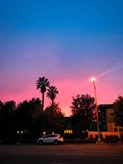 Pasadena Sunset. Shot on iPhone. (DGNacho.com) Tags: pasadena california unitedstates sunset blue sky pink magenta urban street car light city