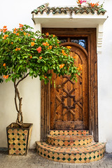 Doors Of Tanger No. 1 (TablinumCarlson) Tags: afrika africa marokko morocco tanger tür door medina altstadt city old town leica m m240 summicron fassade tangier طنجة tandscha tanga maghreb strait gibraltar maroc baum tree plant 28mm northernafrica nordafrika