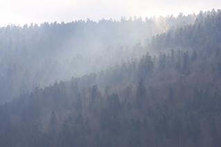 Les Vosges dans la brume