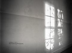 The Corridor (rhfo2o - rick hathaway photography) Tags: rhfo2o canon canoneos7d chichester universityofchichester westsussex corridor sun sunshine window texture light sunlight sunday bw blackandwhite mono architecture