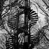 ADNDANDNA (imanol6x6) Tags: sansebastian donostia eh rolleiflex trl f28 6x6 120 500x500 mediumformat mf trix 400 kodak film hc110 bw blackandwhite nophotoshop street landscape architecture