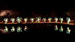 D - Münster i. Westfalen >Chinesische Lichter< im Allwetterzoo (BonsaiTruck) Tags: münster westfalen zoo tierpark tiergarten licht illumination allwetterzoo chinesische lichter lichtkunst skulpturen tiere zebra elefant tiger löwe affe giraffe mond fische drache fuerdrache drachen geier nashorn echsen fabelwesen blumen