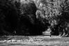 crossing games (jellamalo) Tags: nature hike river adventure blakandwhite