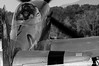 Merlin l'enchanteur ... /Merlin the magician ... (Pierrotg2g) Tags: p51 mustang warbird avion aircraft aviation nikon d90 tamron 70200