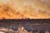 Veld Fire (riaandewet) Tags: satara flames bushfire