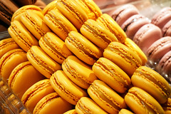 Macarons! (Gary Burke.) Tags: macaron food cookie goodeats ladurée champselysees snack lemonmacaron parisian frenchfood bakery tearoom store shopping yellow colorful restaurant dining frenchdining citylife cityliving city travel wanderlust tourism traveling touristattraction details vacation klingon65 europe european iledefrance paris france garyburke travelphotography citystyle french sony a6300 mirrorless sonya6300 îledelacité frenchrestaurant parisdining cookies sweet 8tharrondissement