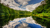 Heaven reflected (SpectrumLight) Tags: landscape sky clouds england lakedistrict yewtreetarn tarn lake pond nature sonya7ii sony fe1635mmf4zaoss heaven reflections scenic nt np ng travel tourism cumbria water waterscape tree mirror