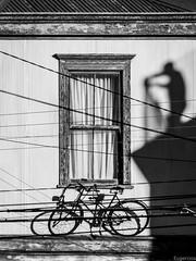 Ventanas para ver (Eugercios) Tags: valparaiso valpo chile ventana window shadow sombra bicicleta bici bike blanco black white negro preto branco composicion cityscape ciudad city cidade unescoworldheritage unesco worldheritage patrimoniodelahumanidad patrimóniomundial scenery