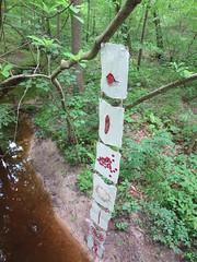 Sense of Place (bgmills) Tags: environmentalart landart bookart textileart encaustic fiberart artonthetrail outdoorinstallation