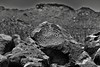 Spiral Pattern of Rock Art (Black & White, Saguaro National Park) (thor_mark ) Tags: nikond800e day3 saguaronationalpark saguaronationalparktucsonmountaindistrictwest lookingsouth blackwhite silverefexpro2 desert desertlandscape sonorandesert desertplantlife outside nature saguaro cactus carnegieagigantea saguarocactus arborescenttreelikecactus cactusacrossdesertlandscape landscape mountains mountainsindistance mountainsoffindistance capturenx2edited colorefexpro signalhill prehistoricrockart petroglyphs intermountainwest southwestbasinsandranges northsonorandesertranges westtucsonnogalesarea tucsonmountains project365 spiral largerocks boulders arizona unitedstates