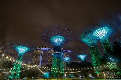 Super Trees (Zoom In, Click On, Check Out) Tags: ngc singapore city night twiglight marina marinabay dark light lights long exposure super trees tree supertree supertrees garden by bay gardensbythebay gardens mega megatree