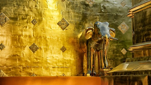"""The Golden """"Elephant"""" & the power of intercession."""