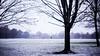 Fog (Sarath00Menon) Tags: london snow park photography canon 5dmark3 5dmarkiii 50mm prime dof cinematography aspect ratio macro contrast colours tones