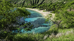 Hanauma Bay (Thad Zajdowicz) Tags: zajdowicz hawaii usa travel availablelight honolulu leica lightroom hanaumabay oahu water reef green trees hills beach people color blue aqua colour tropical outside outdoor vacation paradise landscape seascape grass sea bluff mountain bay