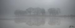 Esthwaite Water (►►M J Turner Photography ◄◄) Tags: esthwaitewater lakedistrict cumbria england unitedkingdom unesco worldheritagesite unescoworldheritagesite lake fog