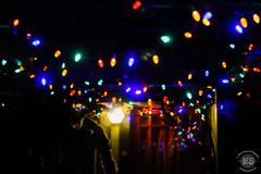 Christmas Lights in Eugene, OR (marinstuart) Tags: eugene oregon nature uo ducks plants graffiti fall reflection photography beautiful sunset sky water droplets lights christmas cheer decor color bokeh