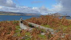 Missed the boat... (Harleynik Rides Again.) Tags: wreck oldwoodenboat shipwreck abandoned isleofraasay nature loch highlands scotland harleynikridesagain nikondf