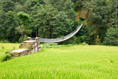 Village of Balthali, Nepal. (RViana) Tags: nepali nepalese nepalês nepalesa southasia 尼泊爾 尼泊尔 نيبال 네팔 नेपाल ネパール נפאל непал bhaltali baltali khopasi kopasi ricefield camposdearroz arrozais bridge ponte