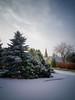 Church Lane - Welburn (aveyardphotography) Tags: welburn york church lane snow winter trees house cold day daylight seasonal wintry