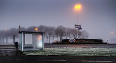 bus stop colors (tvdijk19) Tags: busstop fuji color early light travel flevoland netherlands urbanarte