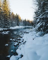 (DrowsyPotato) Tags: sony ilce7rm2 fe 35mm f14 za ƒ80 350 mm 1100 100 nature water snow winter