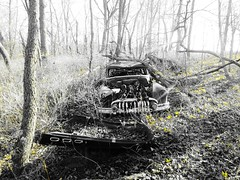 fool's gold.... (BillsExplorations) Tags: abandoned abandonedillinois car automobile old classic vintage woods forest trees decay forgotten rust gold foolsgold selectivecolor blackandwhite monochrome abandonedcar fog neglected