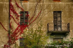 Le case cadono, la natura cresce!!! (Gianni Armano) Tags: casa abbandono rustico finestre edera natura cresce foto gianni armano photo flickr