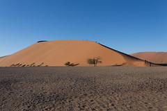 Namibia-114 (grahamharkness632) Tags: namibia sossusvlei africa sand dunes desert