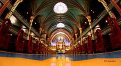 La Basilique Notre-Dame de Montréal (hmeyvalian) Tags: montréal montreal québeccanada basiliquenotredame catholiqueromaine 18241829 néogothique archidiocèsedemontréal architectjamesodonnell placedarmes canoneos7dmarkii rokinon8mm fisheye exposure2sec iso200