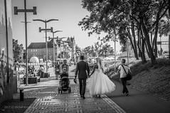 bride and groom.jpg (MichalKondrat) Tags: ludzie polska szczecin bride groom spacer zachodniopomorskie bulwary poland wałychrobrego 18200mm nikond300s