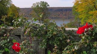 Untermyer Gardens #21
