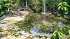 Les couleurs de la nature Thailandaise (Lцdо\/іс) Tags: lцdоіс thailande thailand krabi phuket emerald pool jungle trekking treking thailandia nature flickrexploreme saariysqualitypictures