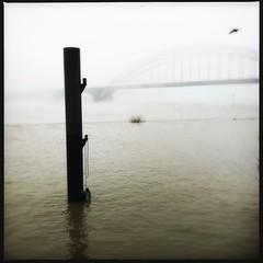 Nijmegen (pietervandennieuwenhuizen) Tags: waal bridge mist nijmegen