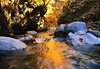 Valley stream in a late fall 3 (chikaraamano) Tags: dreamy flow sunlight lovely clear water stones rocks mountain leaving season drags tree color valley creature lateautumn stream ravine finally forest outdoor upstream charmed repeatedly naturallight freely