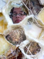 KeepersOfLife-mirror (bgmills) Tags: environmentalart landart hive beeart textileart fiberart sculpture artonthetrail