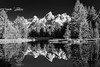 Schwabacher Landing - Explore (Marvin Bredel) Tags: explore marvinbredel schwabacherlanding wyoming jacksonhole grandtetonnationalpark reflection blackandwhite dramatic bw