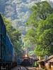 LHF in Braganza ! (mohammedali47) Tags: lhf longhoodforward gt46mac braganzaghats forest indianrailways bcna boxn sonalium locomotive trainspotting trains railfans