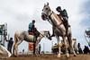 @Chennai (Raja. S) Tags: india rajasubramaniyan horses tamilnadu chennai marinabeach