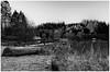 Loch Ard (andygallacher3) Tags: lochard loch water lake trees landscape sunrise boat grass frost mist contrast silverefex lightroomcc nikon d7000 tokina wideangle ultrawide scotland