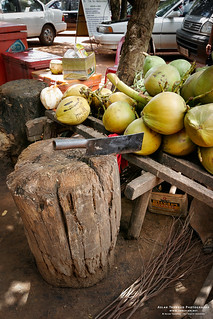 Tools for coconut splitting
