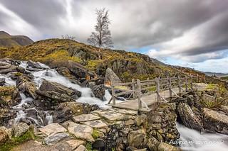 Foot Bridge Rapids Snowdonia