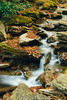 Boone Fork (J. Parker Natural Florida Photographer) Tags: boonefork creek river water longexposure stream brook grandfathermountain tanawhatrail outdoor landscape scenic nature naturalbeauty fall autumn goldenhour nikon1 mirrorless nd8 forest woods rock rocky waterfall cataract blueridgeparkway northcarolina appalachia appalachians mountains vsco vscofilm
