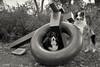 Art Critics (Jasper's Human) Tags: aussie australianshepherd dog