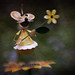 Maggie Mouse (Explored November 28, 2017)