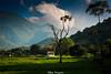 LIFE LESSON (Sathiya Narayanan.M.M) Tags: landscape stunning mountain countryside rice field salem tamilnadu india tree light rays golden hour single house hut greenish foothills