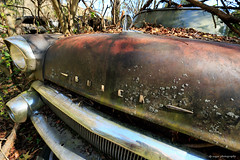 Old Car City 2017 (dpsager) Tags: dpsagerphotography ga georgia junk oldcarcity whitecity junkyard rust