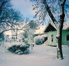 blizzard (skua47) Tags: nature places scenic snow southdakota unitedstates wagner