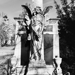 Un ange passe (LucieOnTheBridge) Tags: streetphotography noiretblanc cimetiere budapest